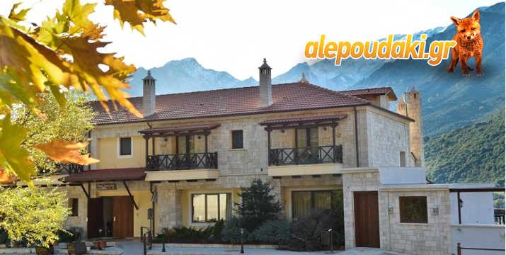 προσφορές Alepoudaki 168832