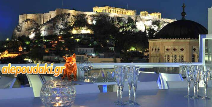 Βραδιά Διασκέδασης και Γνωριμίας, με ποτό και μουσική, στο Roof Garden του Athens Status Hotel, στον 7ο όροφο, με θέα την Ακρόπολη !!!  Το Σάββατο 19 Μαΐου, στις 9:30 μμ