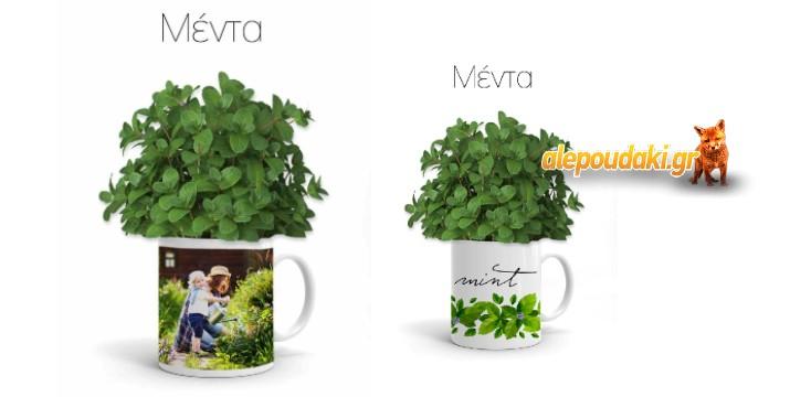 Κούπες Αρωματικών Φυτών, σε 8 επιλογές με φωτογραφία σας ή και όχι!!! (p.153)